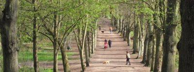 Hampstead-Heath